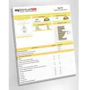 Sprint Wireless Customer Experience Report